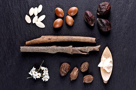 Les meilleurs ingrédients pour nourrir et hydrater la peau
