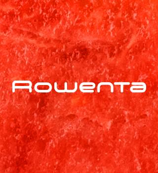 -20 % sur Rowenta